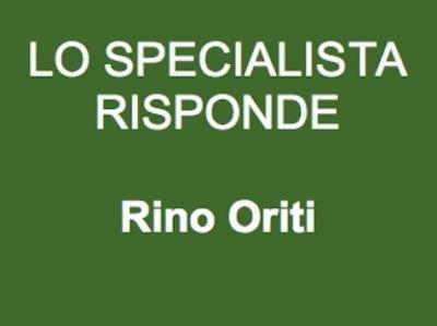 Greenlaser-IT-Lo-Specialista-Risponde-Rino-Oriti-Urologo-476xy