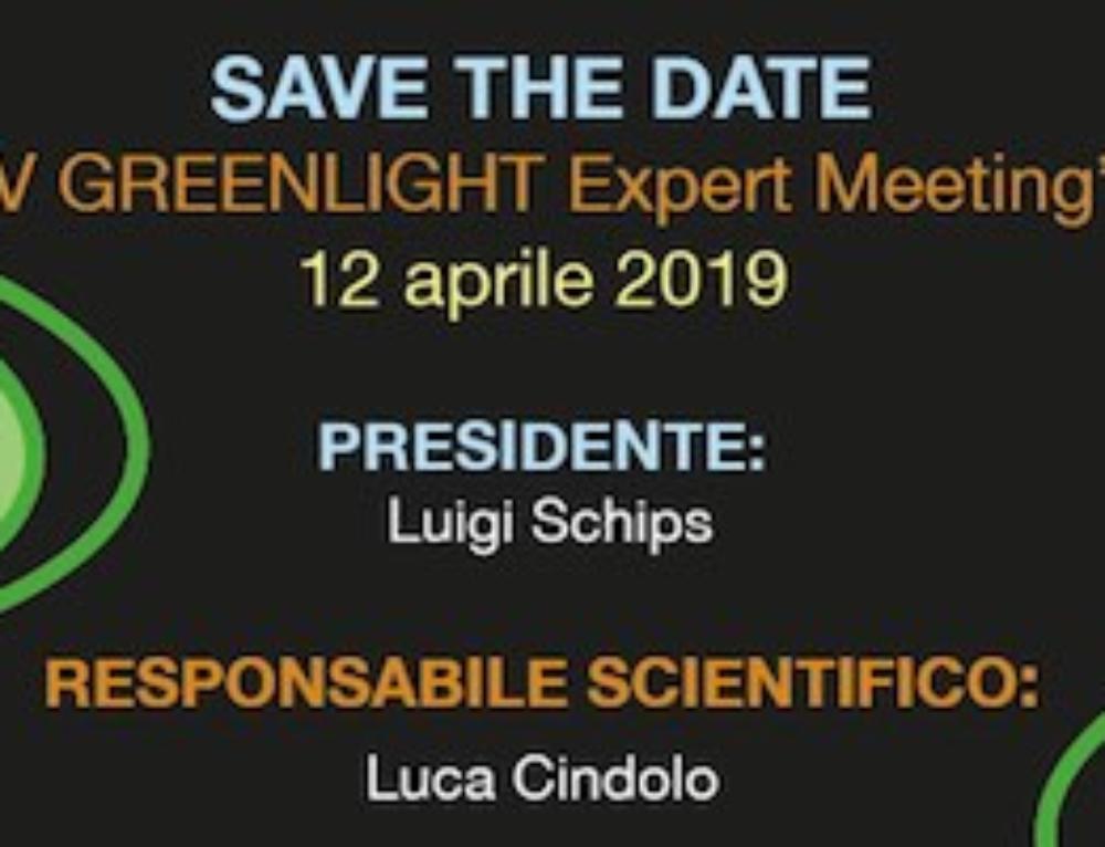 V GreenLight Expert Meeting