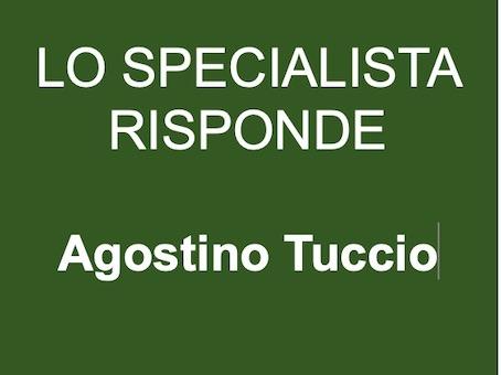 Greenlaser-IT-Lo-Specialista-Risponde-Agostino-Tuccio-Urologo