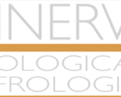 Greenlaser-IT-Operative-Profile-Safety-and-Functional-Outcomes-After-GreenLight-Laser-Prostate-Surgery-Results-From-a-12-Months-Follow-Up-Multicenter-Italian-Cohort-Analyses-